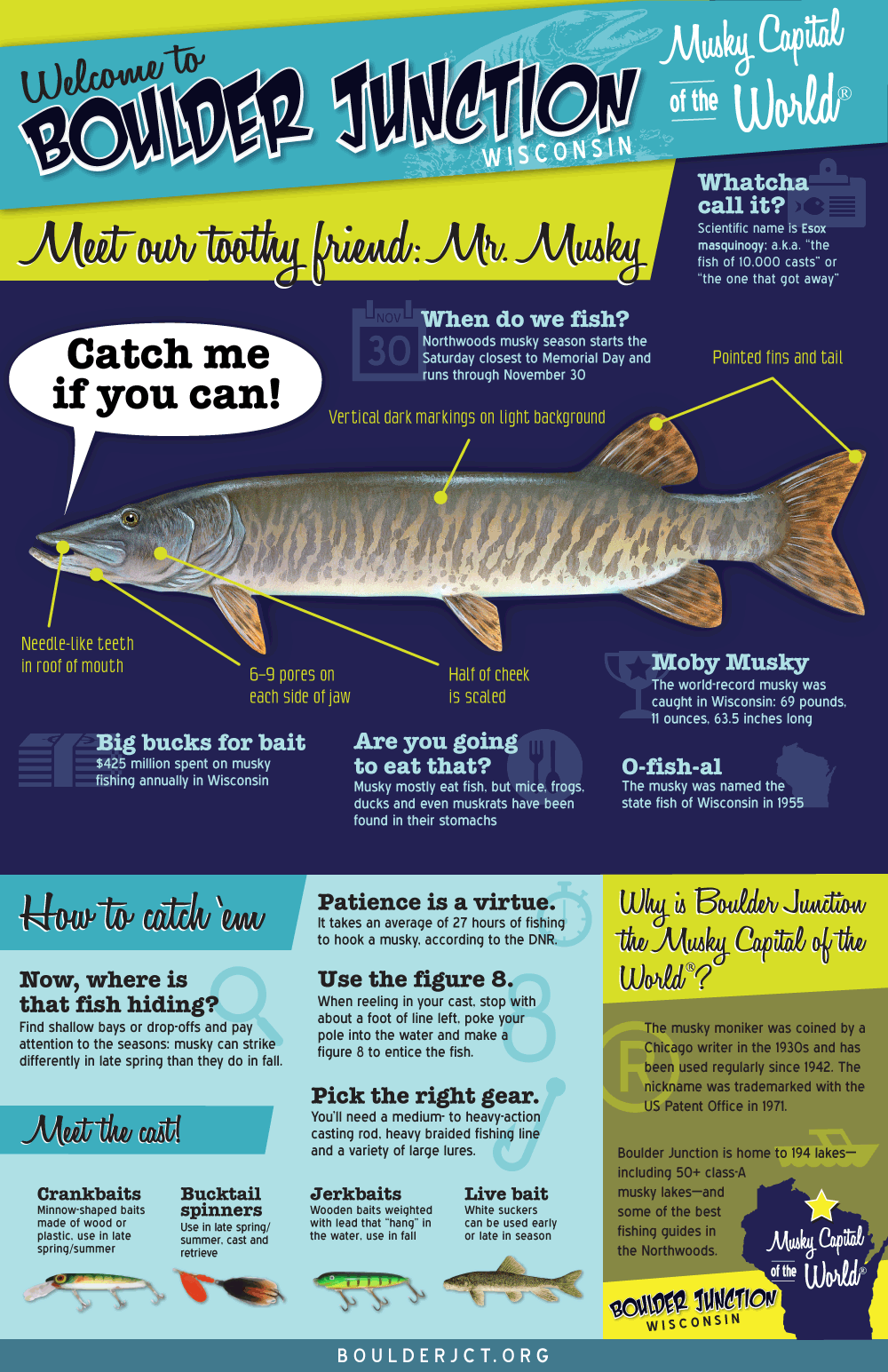 Musky Infographic