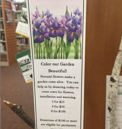 """Boulder Junction Public Library Selling """"Seed Packets"""" for Reading Garden Fundraising Campaign"""
