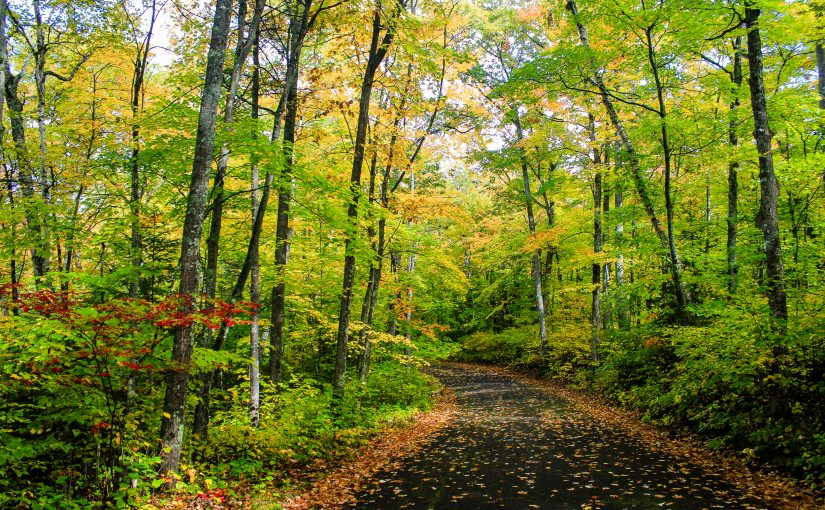 Hiking trails this fall