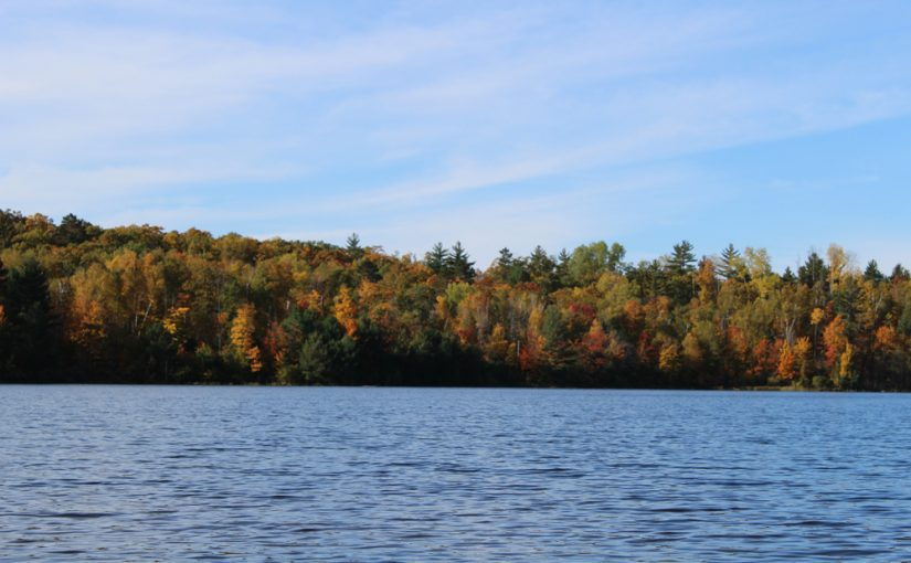 Things to know about the Northern Highland-American Legion State Forest