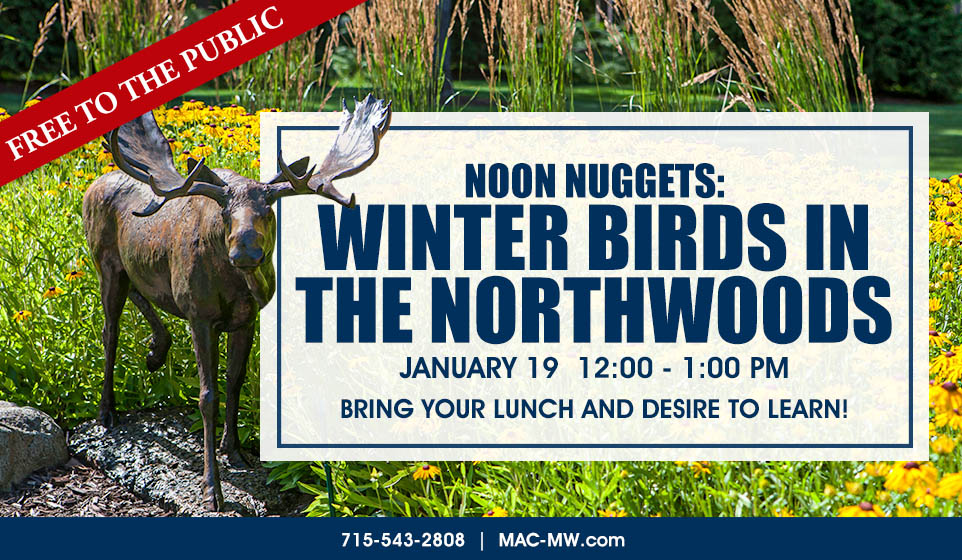 20 2534 Noon Nugget Birds Northwoods Mac Free Class Chamber Ad (002)