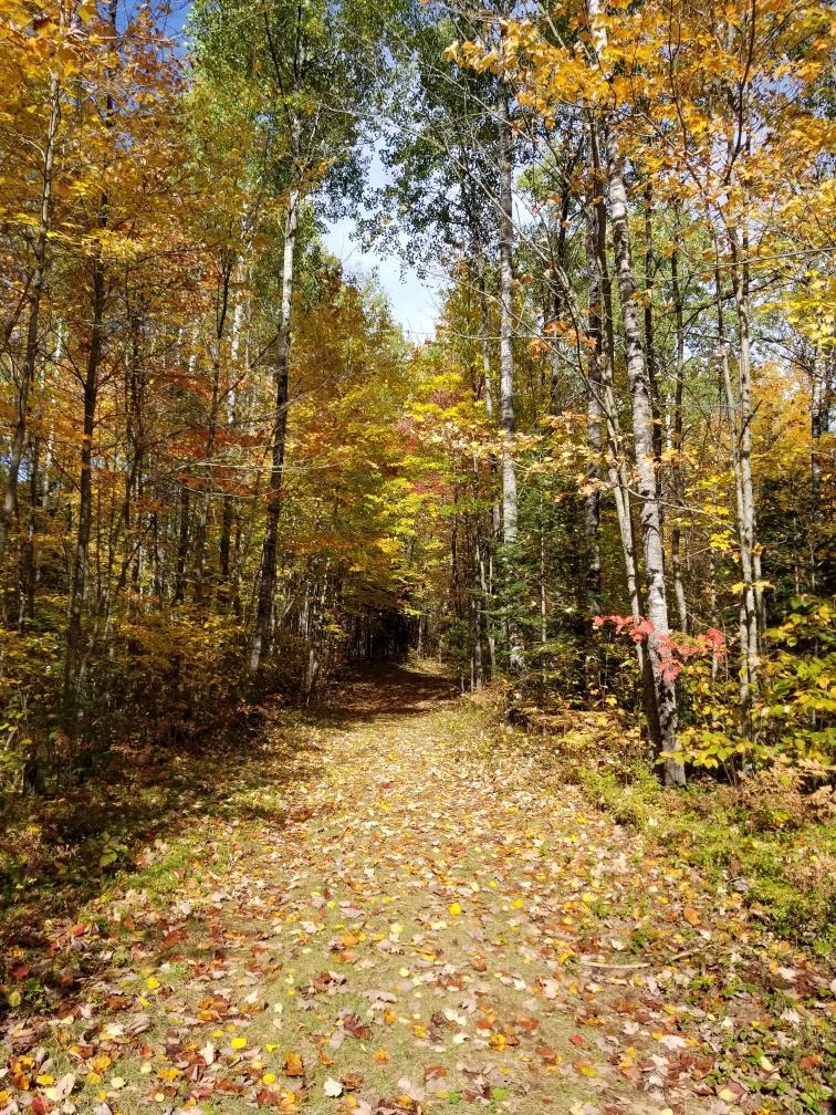 Shannon Lake Trail boulder junction wi